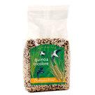 Quinoa-Tricolore-500-gram-(biologisch)