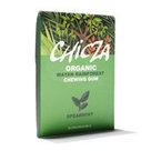 biologische kauwgom chicza