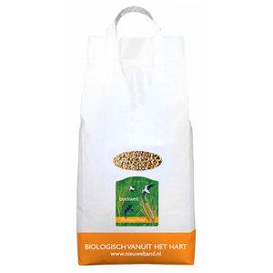 Boekweit Grootverpakking 5 kilo (biologisch)